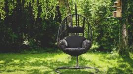 Badanie PMR: dekoracje i narzędzia najczęściej kupowanymi artykułami do ogrodu